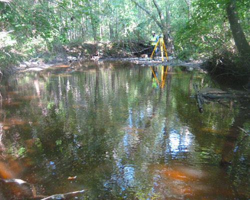 Haile Gold Mine Stream Assessment and Monitoring