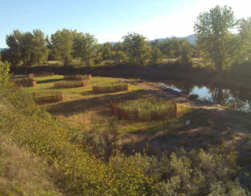 • South Platte River at South Platte Park Phases I - III, Littleton, CO
