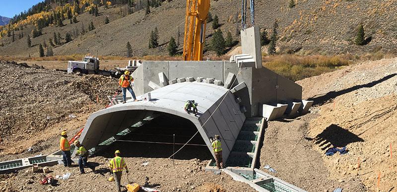 Swan River Construction