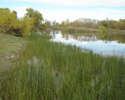 Fort Collins Natural Areas