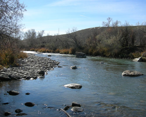 Uncompahgre River Aquatic Habitat